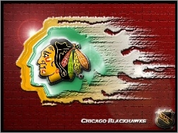 Chicago Blackhawks, Drużyny, Logo, NHL